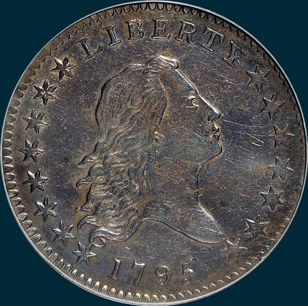 1795, O-121 Edge, Flowing Hair, Half Dollar