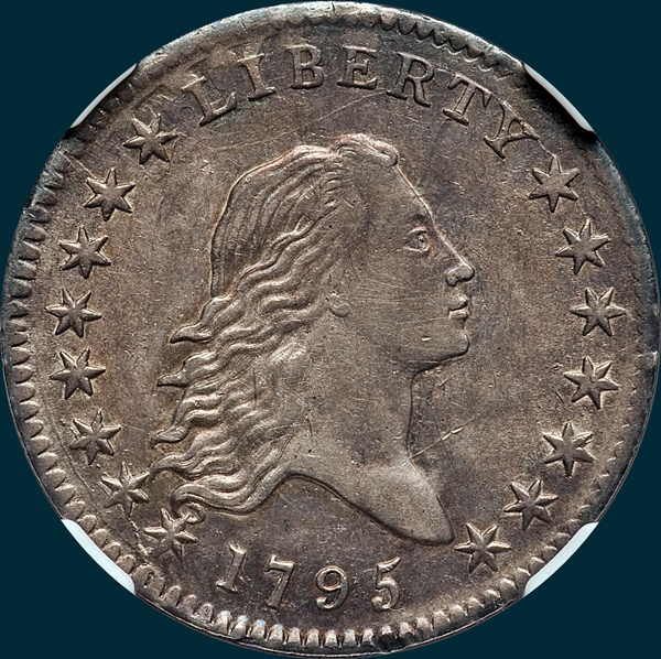 1795, O-116 Edge, Flowing Hair, Half Dollar